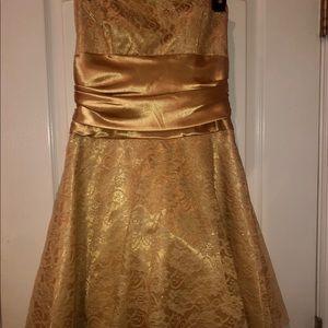 Masquerade Brand Gold Lace Dress